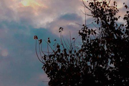تصاویری هنری  از هوای ابری در فصل پاییز??